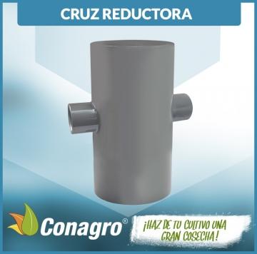 CRUZ_REDCTORA_INYECTADO