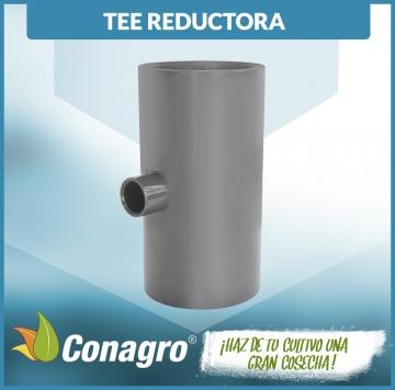 TEE_REDUCTORA_INYECTADO